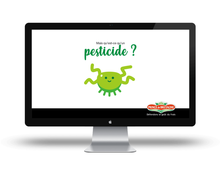 Agence-web-print-creation-video-motion-deisgn-Prince-de-bretagne