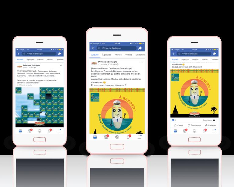Campagne-facebook-reseaux-sociaux-prince-de-bretagne-landivisiau