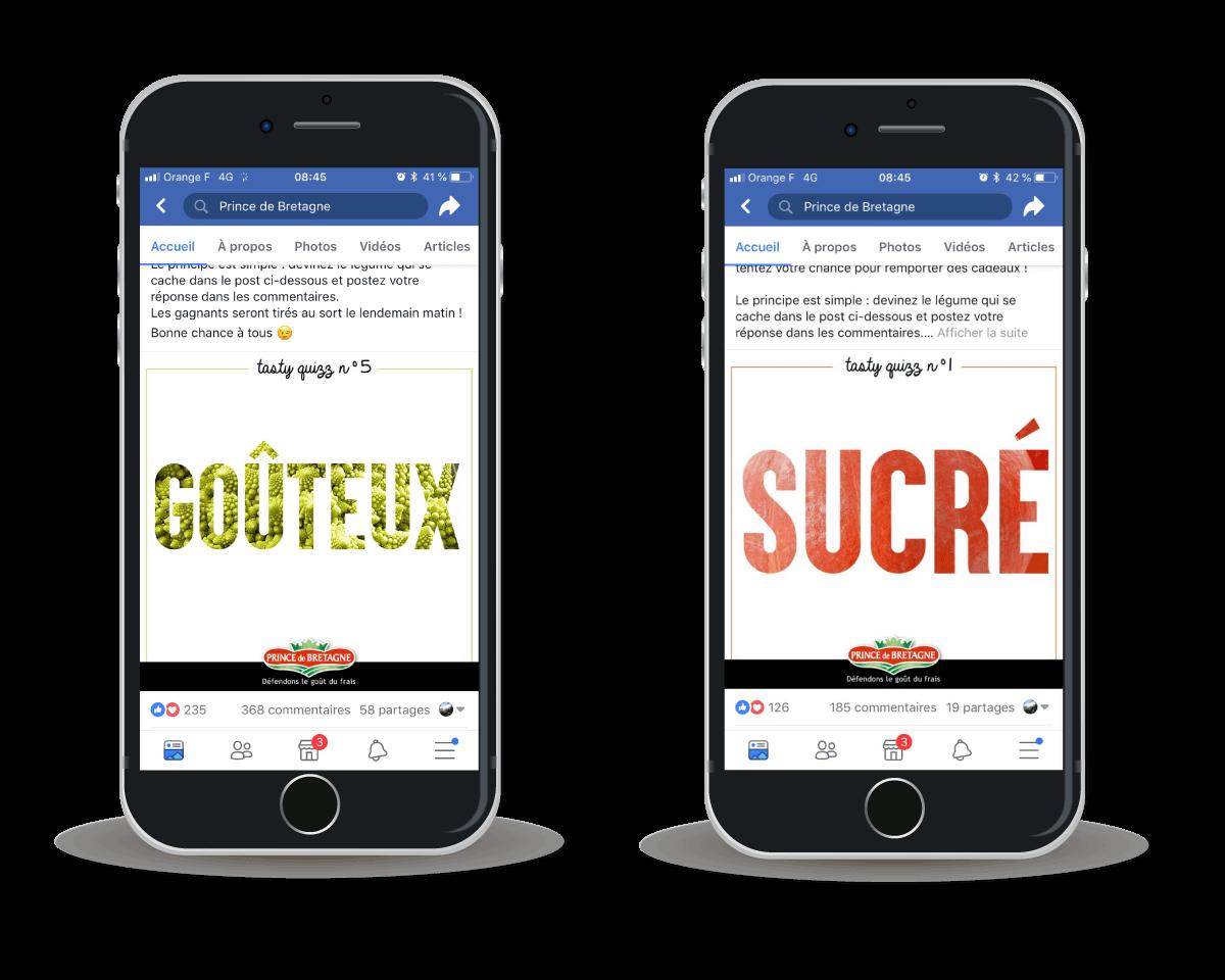 Campagne-reseaux-sociaux-facebook-Prince-de-bretagne