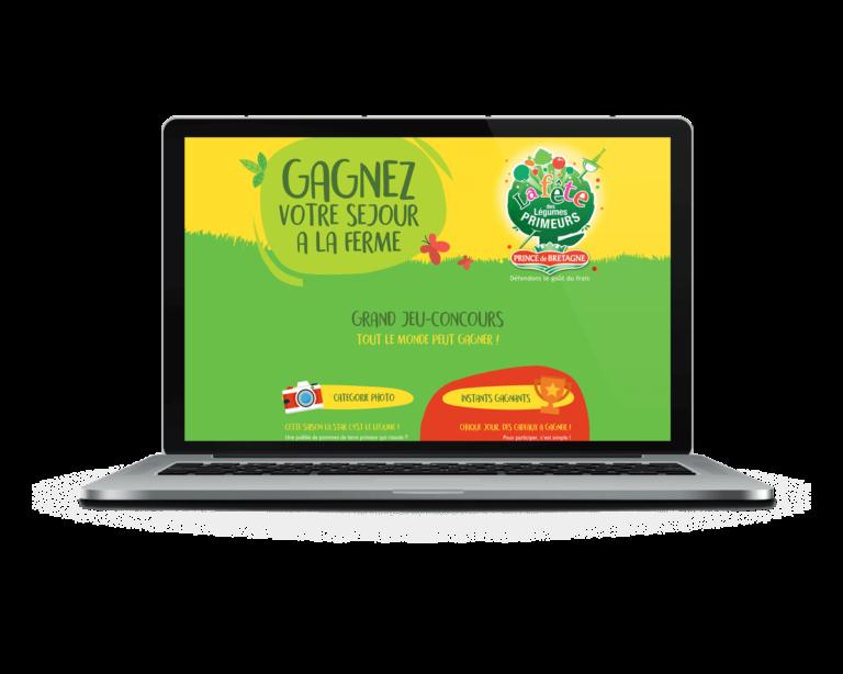 Creation-site-web-communication-digitale-landivisiau-bretagne-FDLP-Prince-de-bretagne