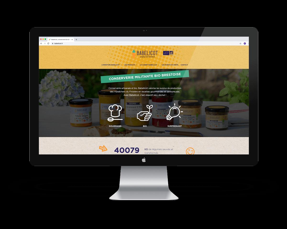site-web-communication-digitale-landivisiau-bretagne-babelicot